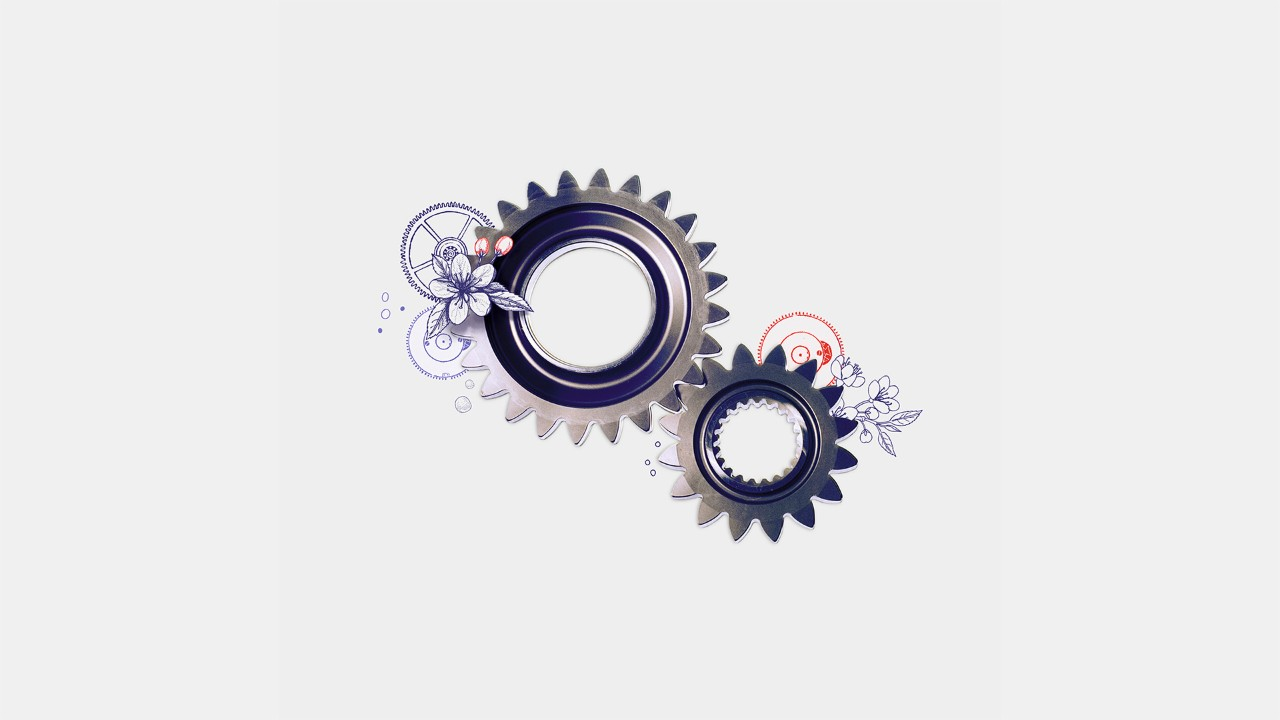 cogs, image is used for rely on our expert support